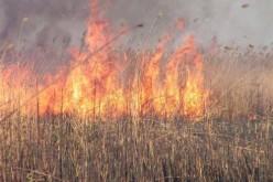 Пожежі в Павлограді.
