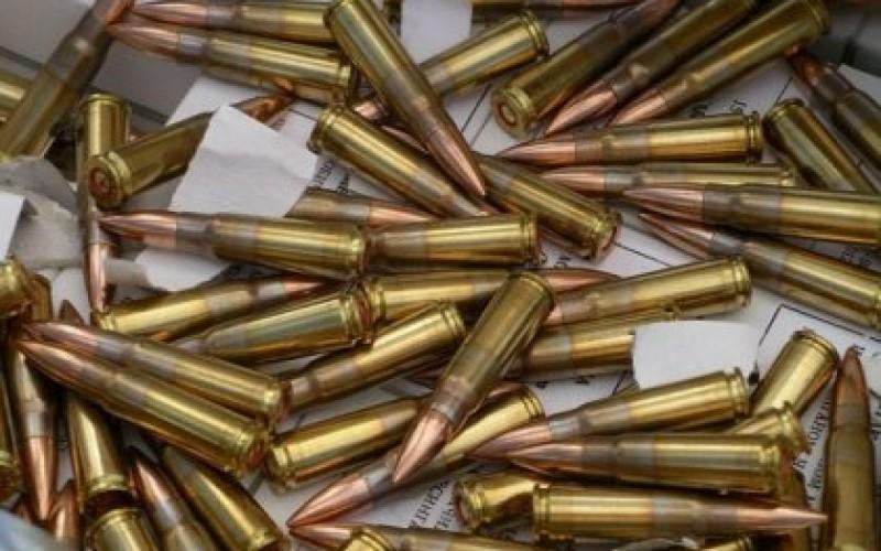 В мусоре нашли патроны и учебную гранату
