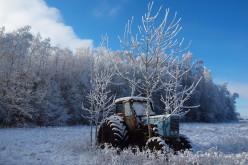 В новорічну ніч в селі Кочережки зловмисник вкрав … трактор