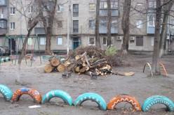 Павлоградську школу врятували від аварійного дерева (ФОТО)