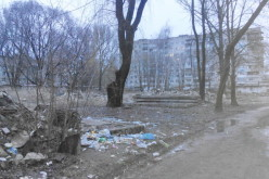 Жителі мікрорайону «Полігон» звертаються до міської влади з проханням позбавити район від сміття і бездомних собак