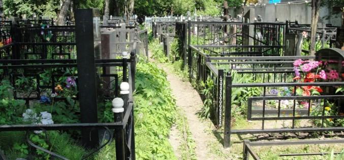В Павлограде ликвидирована преступная группа, которая требовала взятку за место на кладбище