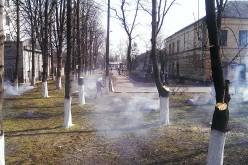 Павлоградські комунальники серед білого дня палять листя