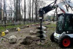 У парку ім. Т. Шевченка висадили липи (ФОТО)