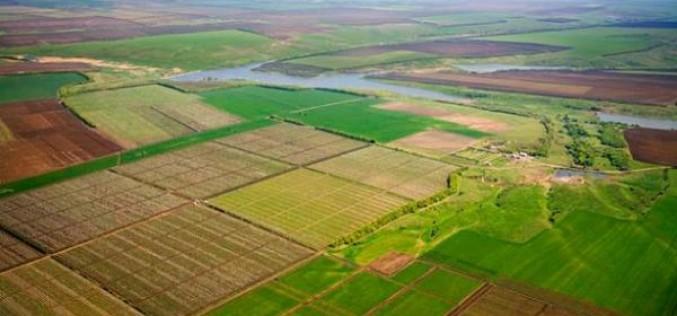 Каждый украинец имеет право на бесплатный земельный участок. Как его получить?