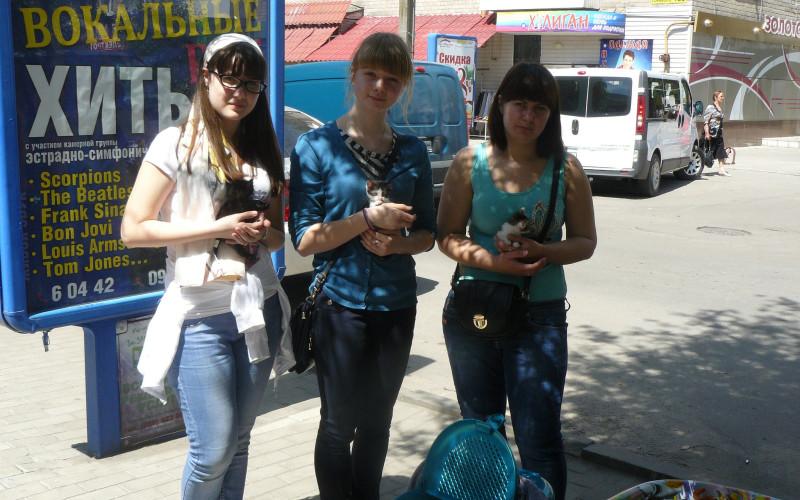 Хто є справжнім захисником безпритульних тварин у Павлограді?