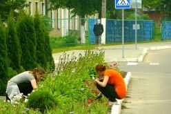 Куда летом в Павлограде устроиться на работу подросткам?