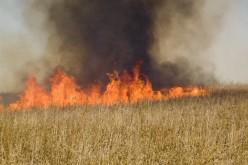 Неподалік покинутої військової частині Павлограда сталася пожежа