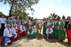 Богуславці привезли з Сорочинського ярмарку диплом за І місце