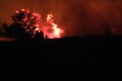 Пожар вблизи Павлограда: «Огонь выше пожарных машин…» (ВИДЕО)