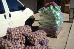 Жители Прикарпатья передали 1 т овощей «Кулинарной сотне «Павлоград Украина»