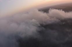 Вблизи Павлограда загорелся хвойный лес (ФОТО)