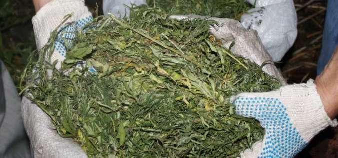 В 2015 году павлоградские правоохранители изъяли почти 24 кг наркотиков