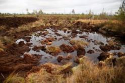 В Павлограде предлагают затопить лиман, чтобы не допустить задымленности