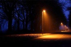 В городском парке установили освещение центральной аллеи