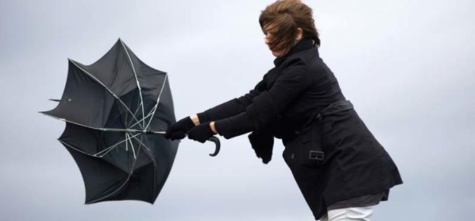Павлоград ждут дождливые выходные