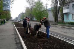 В Першотравенске провели субботник «Озеленение города»