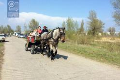 На территорию «водозабора» уже завезли лошадей (ФОТО и ВИДЕО)