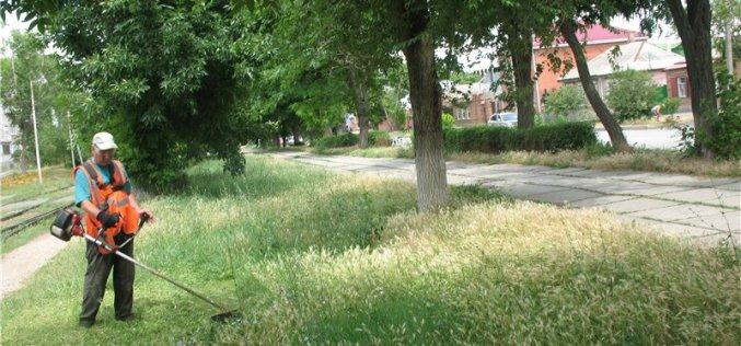 Коммунальщики будут косить траву даже в выходные