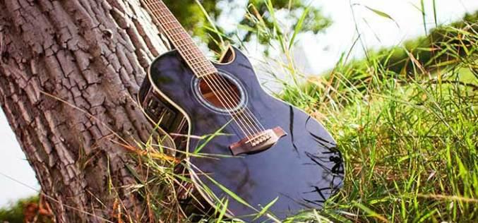 11 июня — Музыкальный пикник в парке им. 1 мая