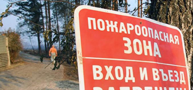 Павлоградцев будут штрафовать за автопрогулки по лесу