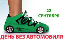 День без автомобиля: ул. Соборную перекроют для личных авто