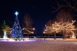 Новый год Павлоград встретит со старой ёлкой?