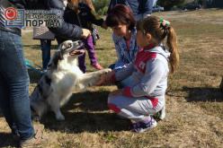 В Павлограде проводят занятия по канистерапии для деток с отклонениями в развитии (ВИДЕО)