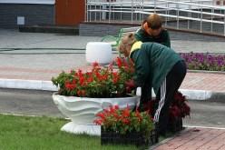 Для уборки одного из районов города предлагают привлечь подрядную организацию