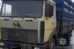 Павлоградские полицейские задержали грузовик, перевозивший 14 тонн семечек без документов