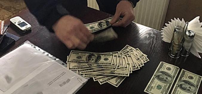 1 га земли в Павлоградcком районе коррупционер оценил в $600 (ФОТО)