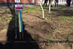 В память о погибших АТОвцах в школах Павлограда высаживали деревья (ФОТО и ВИДЕО)