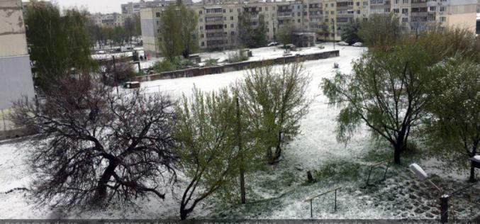«Зима, ты пьяная, иди домой!». Павлоградские пользователи соцсетей отреагировали на апрельский снег