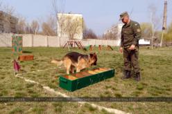 В воинской части Павлограда определили лучших среди кинологов и их служебных собак