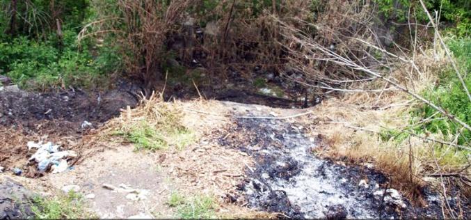 В Павлограде больницу окутал дым от мусора, а в Терновке загорелся батут
