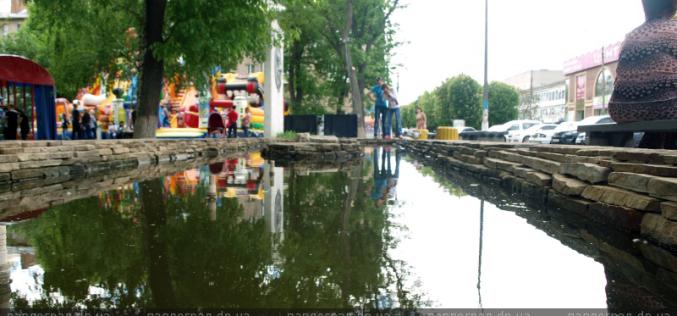 В Павлограде в фонтан запустили золотых рыбок (ВИДЕО)