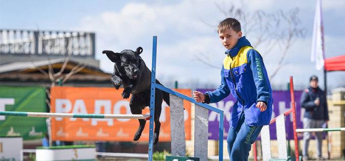 В Павлограде состоятся национальные соревнования по спорту с собаками