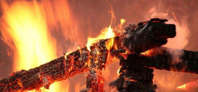 Под Павлоградом горящие деревья перекрыли движение машин