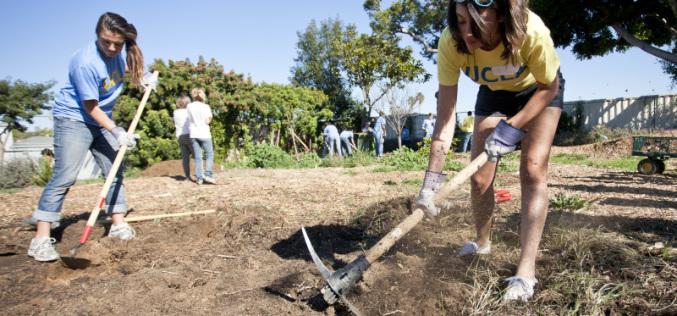 Убирать, озеленять и ухаживать за могилами в Павлограде помогают безработные