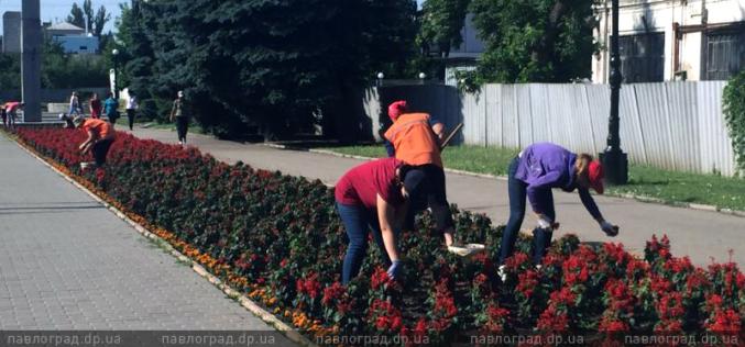 В Павлограде школьникам, которые летом работали, подарят флешки и грамоты