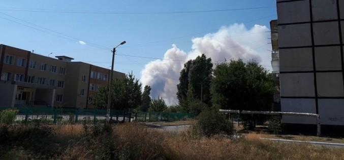 В Павлограде горит лес (ОБНОВЛЯЕТСЯ)