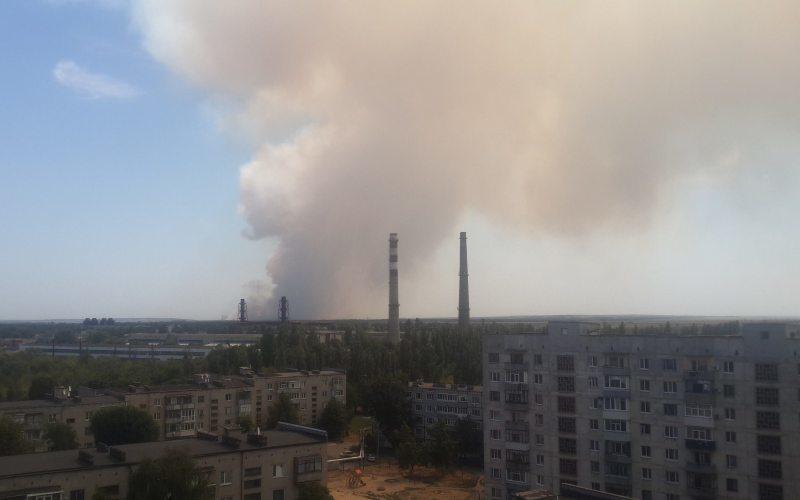 Павлоградцев напугал дым над городом: горит Петропавловский лес (ФОТО)
